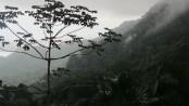 Vista do Vale - capa