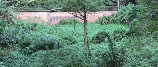 Dry river bed of the Rainha River in Parque da Cidade