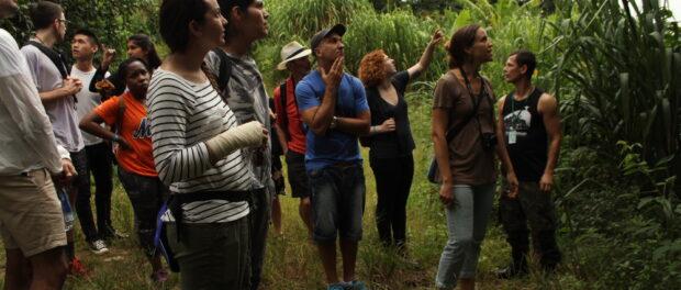 Eco walk through Vale Encantado's surrounding forest.