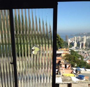 The bullet that hit a young boy in Rocinha came in through his window.