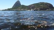 Trash accumulates in the Guanabara Bay. Photo by Fernando Maia/UOL Mais