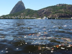 Trash accumulates in the Guanabara Bay. Photo by Fernando Maia/UOL Mais
