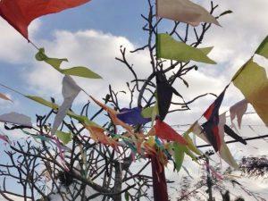 Festa junina decorations featured