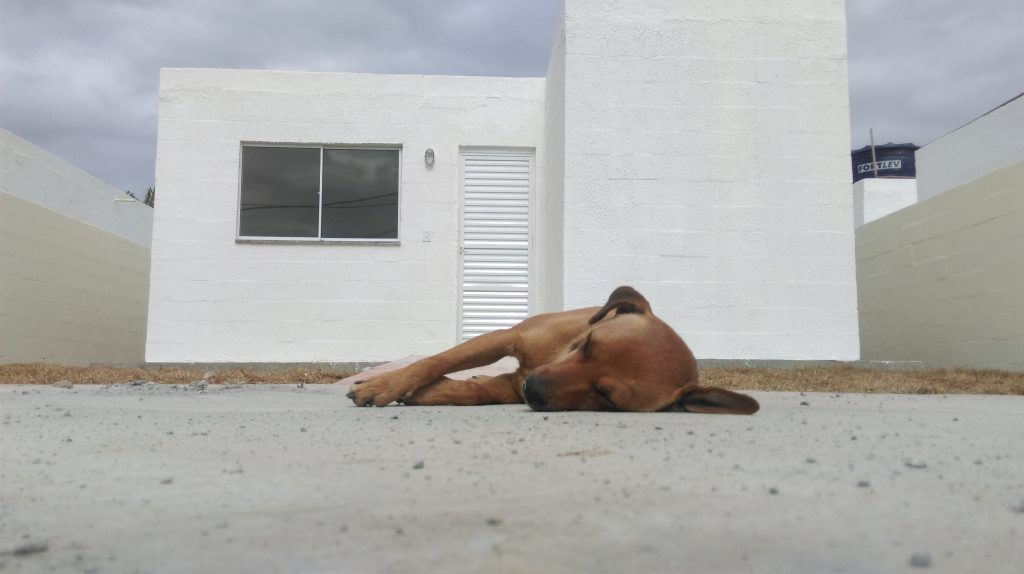 Some of Vila Autódromo's residents already seem quite at home with the new houses