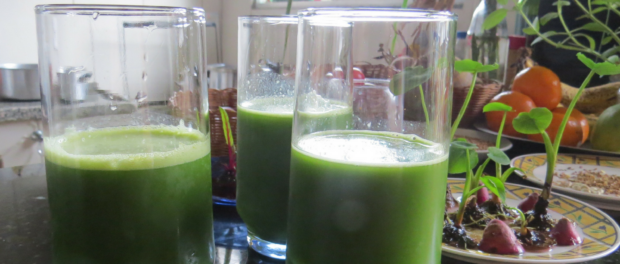 Green juice prepared by Graça, organic chef in Vidigal