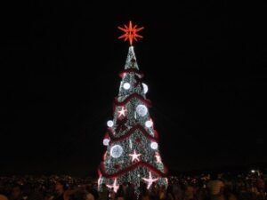 Christmas tree in Complexo do Alemão