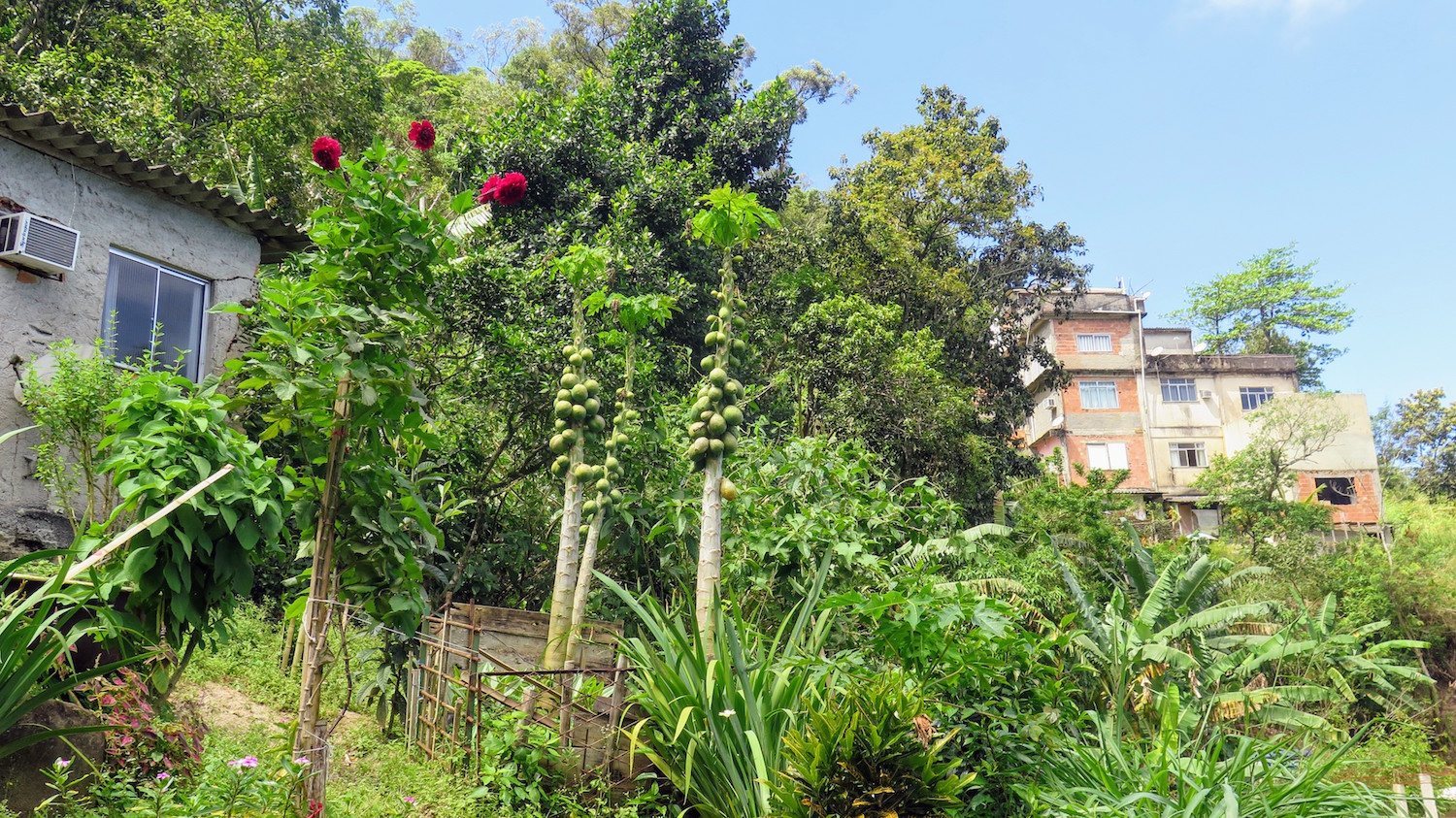 The community and its gardens are inseparable