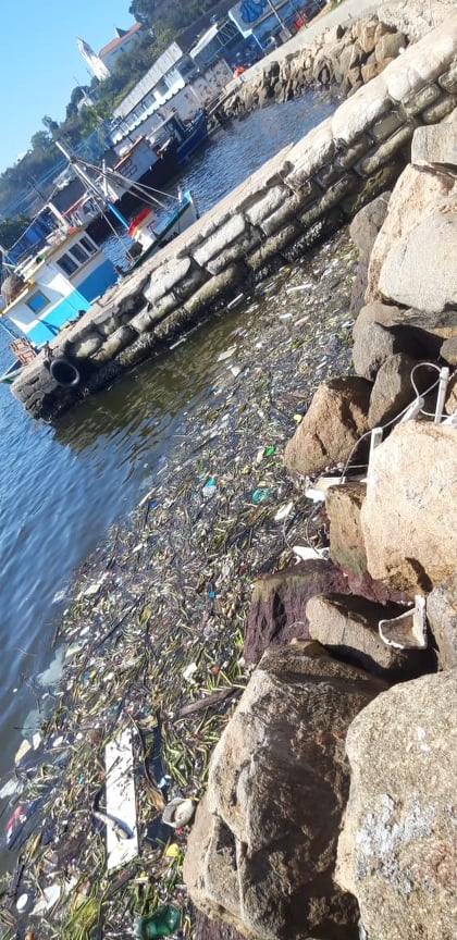 Rio de Janeiro's polluted Guanabara Bay at Zumbi Square, near Zumbi Beach, in Ilha do Governador, a neighborhood in Rio's North Zone. Photo by Julio Santos Filho, Sep. 2020.